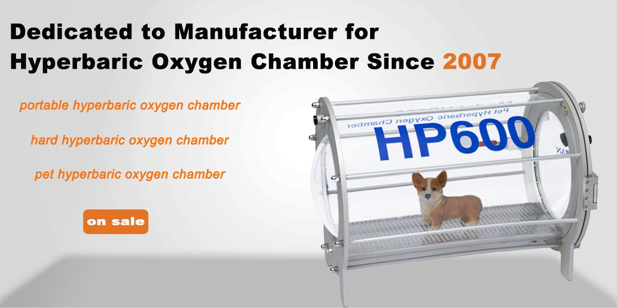 HP600 Veterinary Hyperbaric Oxygen Chamber for Animal Clinic