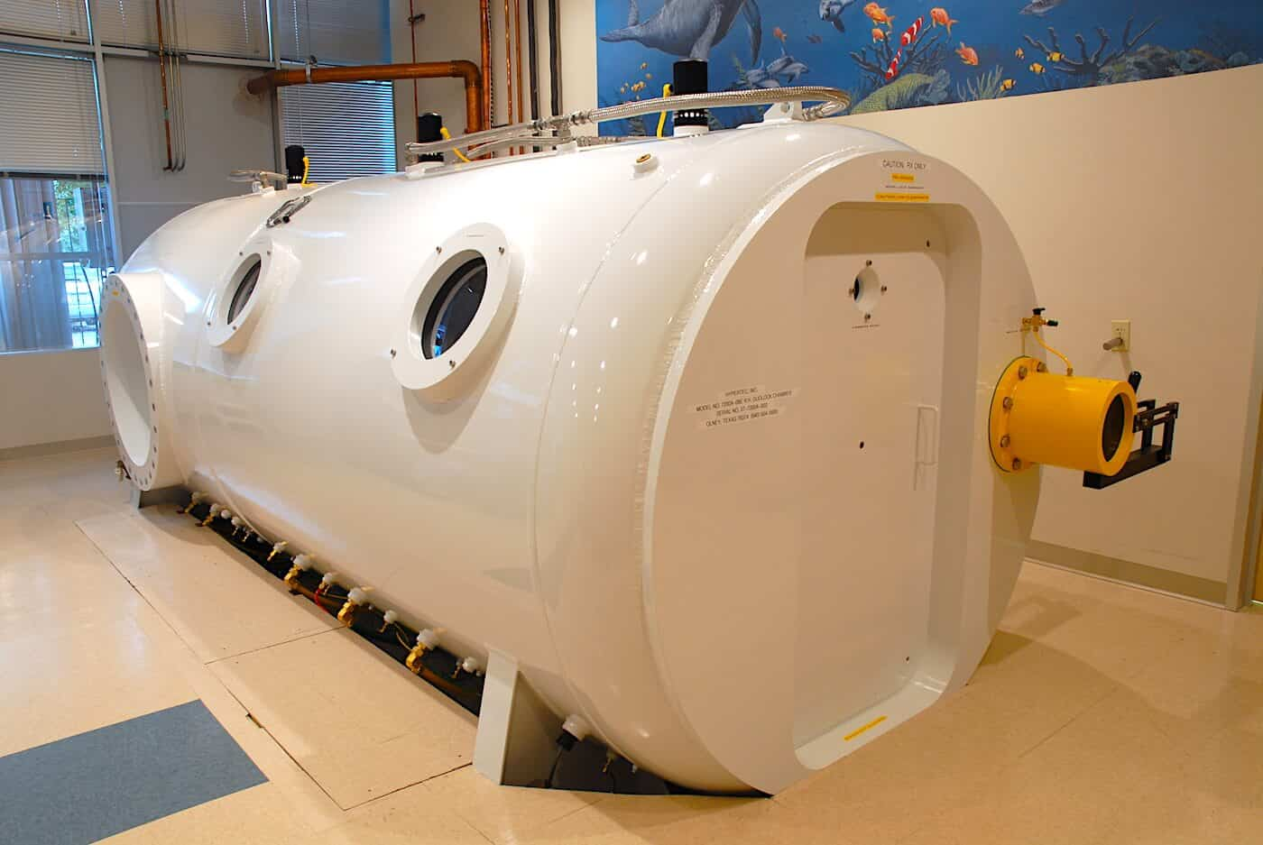 Why gym owners should buy hyperbaric chamber Canada?